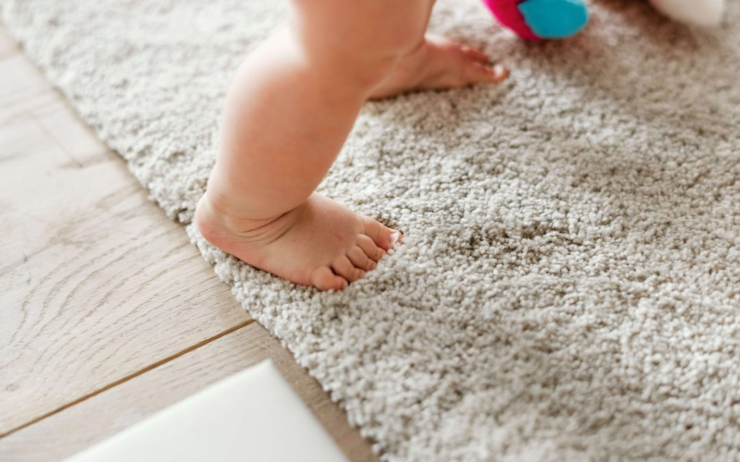 Why do you have to hire knowledgeable Carpet Cleaner rather than Doing It Yourself?